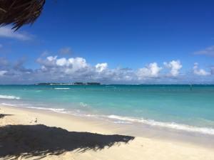 Melia Resort Beach View