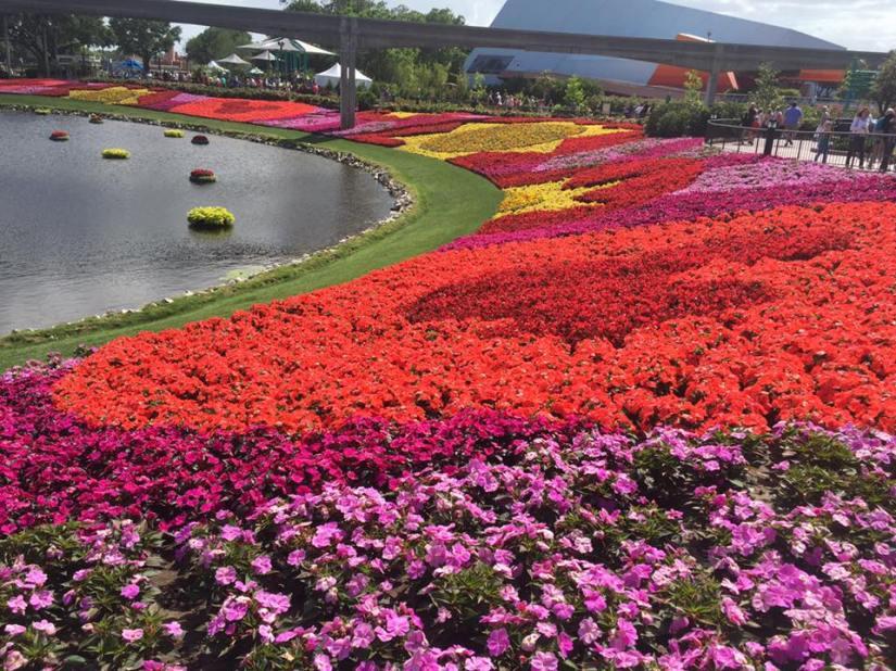 "24th Annual EPCOT ""International Flower & GardenFestival"""