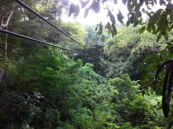 zip-lining-jamaica